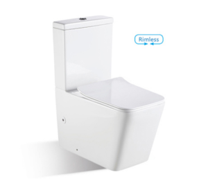 In Wall Rimless Toilet BL-102N-FST - image bl-103n-300x258 on https://portellihomecentre.com.au