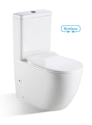 In Wall Rimless Toilet BL-102N-FST - image bnk-toilet-300x405 on https://portellihomecentre.com.au
